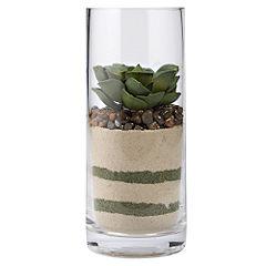 Tu Succulent in Tall Cylinder Vase