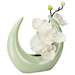 Tu Cream Orchid in Green Moon Pot
