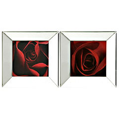 Gallery Set of 2 Mirrored Framed Red Rose Prints