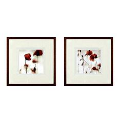 Set of 2 Framed Poppies 40x40cm