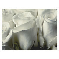 Black and White Ice Roses Canvas Wall Art 60x80cm