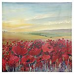 Poppy Fields Canvas Wall Art 48x48cm