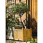 Rowlinson Square Planter