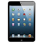 iPad mini with Wi-Fi 16GB Black
