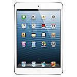 iPad mini with Wi-Fi 16GB White