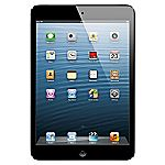 iPad mini with Wi-Fi + Cellular 16GB Black