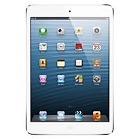 iPad mini with Wi-Fi + Cellular 16GB White