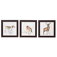 Watercolour Animal Framed Animal Prints