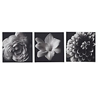 Black & White Floral Set of 3 Canvas